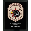 AIR FORCE SERE CUSTOM SERVICE PLAQUE