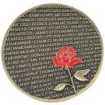 Vietnam Veteran Never Forgotten CHALLENGE Coin