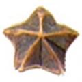 "1 BRONZE STAR DEVICE  (1/8"")"