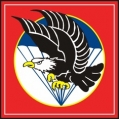Vietnam Airborne Decal Sticker