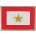 "PATCH-FAMILY MEMB. GOLD STAR HONOR (2-1/2""X3-1/2"")"