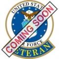 """PIN-USAF LOGO, VETERAN (1"""")"""