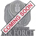"PIN-USAF LOGO, PEWTER (1"")"