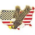 """USA EAGLE PIN (1"""")"""