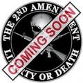 """2ND AMENDMENT PIN - (1"""")"""