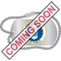 PIN-USAF EMBLEM D.T