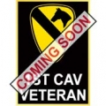 "ARMY 1ST CAV VETERAN PIN (1"")"