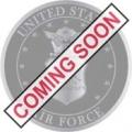 "USAF EMBLEM STAMPED PIN (1"")"