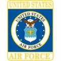 "PIN-USAF LOGO, RECTANGLE (1"")"