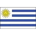 FLAG-URUGUAY (3ftx5ft) .