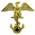 "PIN-USN, CADET EAGLE (1-1/16"")"