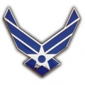 "PIN-USAF LOGO II, WINGS (1"")"