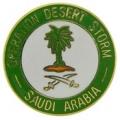 "PIN-DEST. STORM, SAUDI ARAB (1"")"