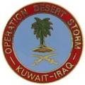 """PIN-DEST. STORM, IRAQ/KUWAI (1"""")"""