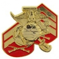 "PIN-USMC LOGO, W/RANK (1"")"
