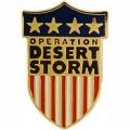 "PIN-DEST. STORM, USA SHIELD (1"")"