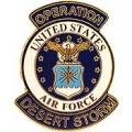 "PIN-DEST. STORM, USAF, LOGO (1"")"