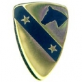 "PIN-ARMY, 001ST CAV. 2-STAR (GOLD) (1"")"
