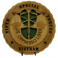 Fifth Special Forces (Vietnam)