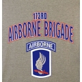 173RD AIRBORNE VETERAN T-SHIRT-  AVAILABLE IN GREY, BLACK, OR OD GREEN